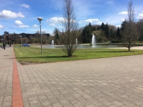 Green grass, blue skies Bliss :)