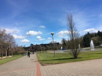 Blue skies, green grass... bliss! :)